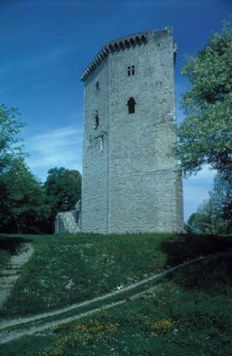 Historia Medieval del Reyno de Navarra